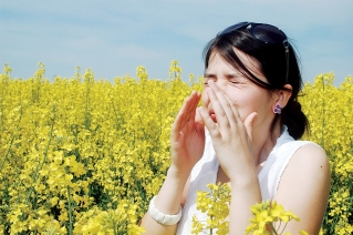 allergy_br.jpg